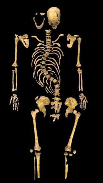 The skeleton found under a car park in Leicester, England. Richard's bones were found 527 years after his defeat at the Battle of Bosworth by Henry VIII's father, which to me is absolutely astonishing (and one of the coolest things ever).