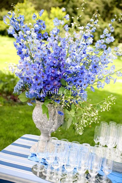 Best images about blue flower arrangements bouquets