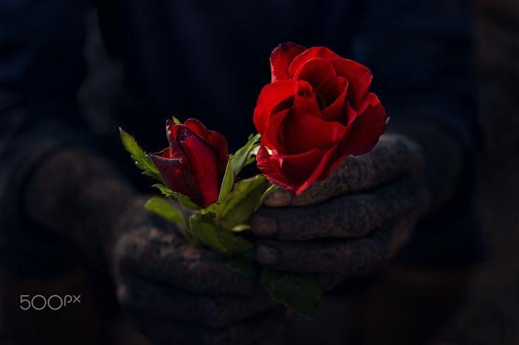 Valentine - null