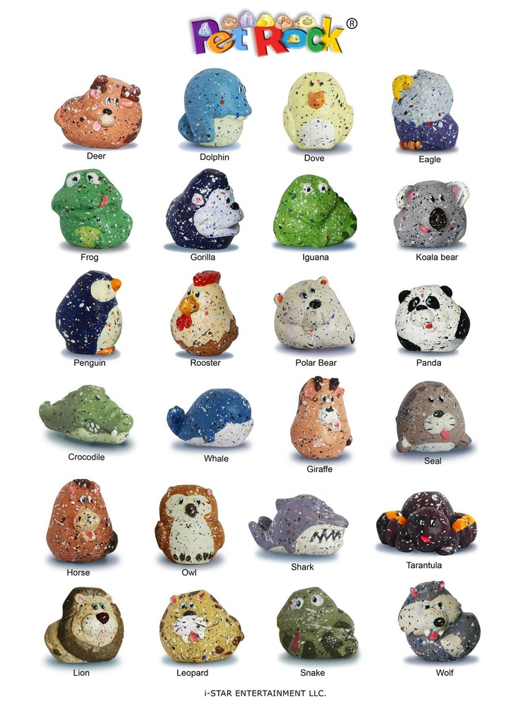 rock crafts ideas great ideas pet rocks rock painting 2845