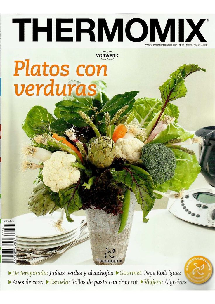 ISSUU - Revista thermomix nº41 platos con verduras by argent
