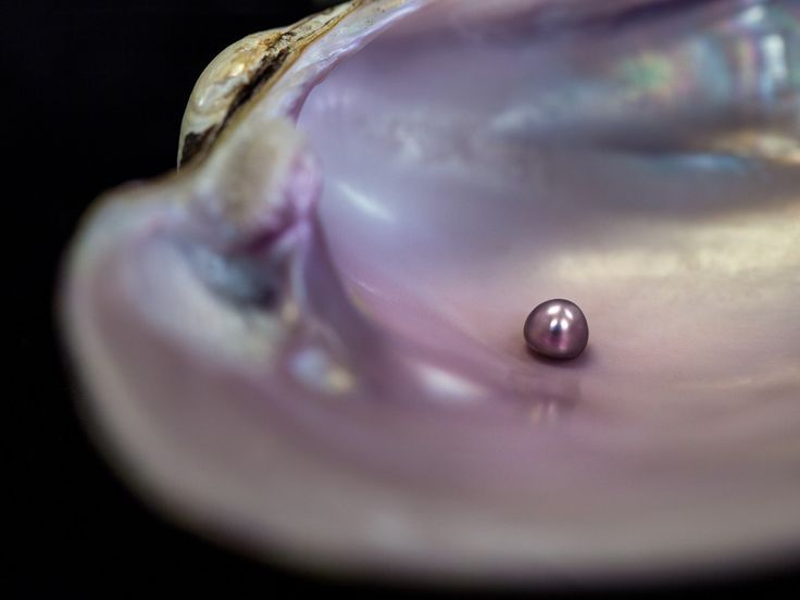 We know West Texas landscapes yield incredible sunsets, but did you know the riverbeds produce freshwater pearls? | Hunting the Concho Pearl from San Angelo