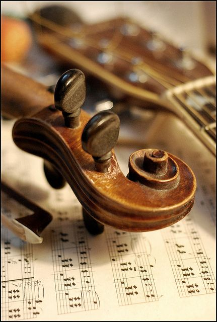 Violin by Mary.Do on Flickr.