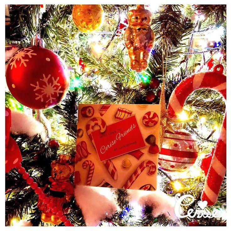 Merry christmas ステキなクリスマスをお過ごしください