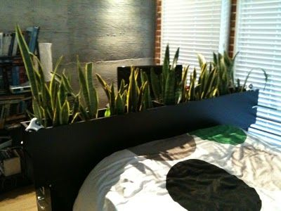 IKEA Hackers: Benno Dvd Tower Headboard And Room Divider. Use Wheat Grass  Instead.