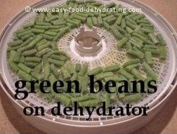 Green beans on Nesco dehydrator tray. More info. at http://www.easy-food-dehydrating.com/dehydrating-beans.html