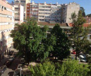 Casas para arrendar em Lisboa — idealista
