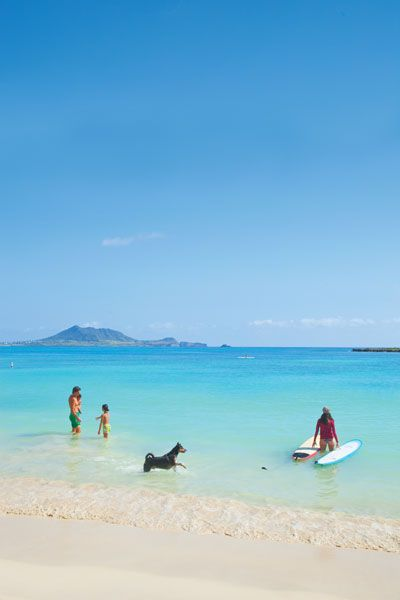 Kailua Beach Park: The Anti-Waikiki - Honolulu Magazine - June 2013 - Hawaii This is truly paradises, sea turtles every where & they aren't shy also the sand is unbelievably soft! Gorgeous place. Take a beach cruiser enjoy your trip to Kailiu. Take in the island breeze.