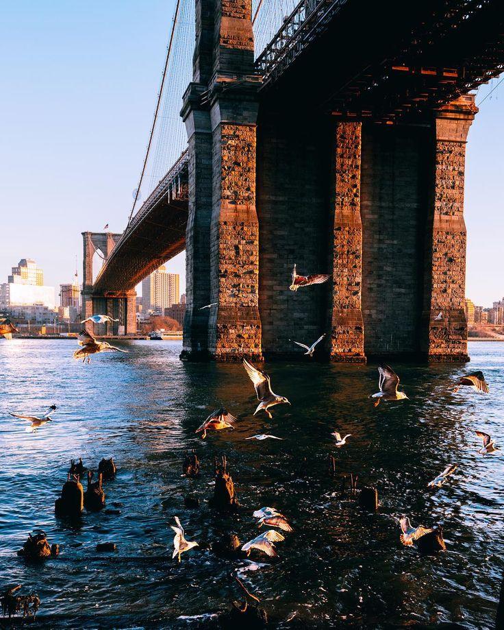 Brooklyn born.