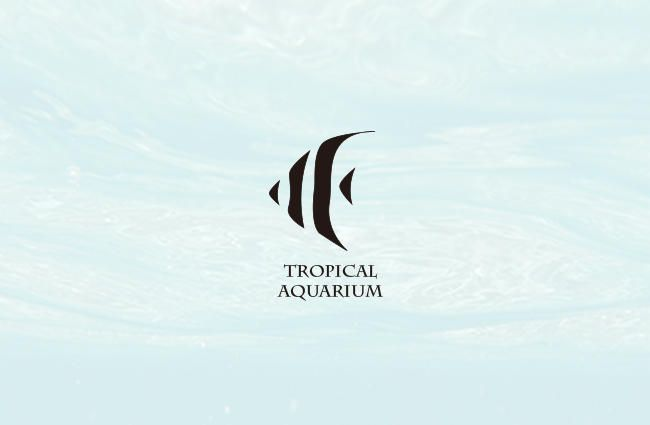 Salevis | Tropical Aquarium logo-Illustrate a tropical fish in a simple and elegant way | Design by Samantha Lin