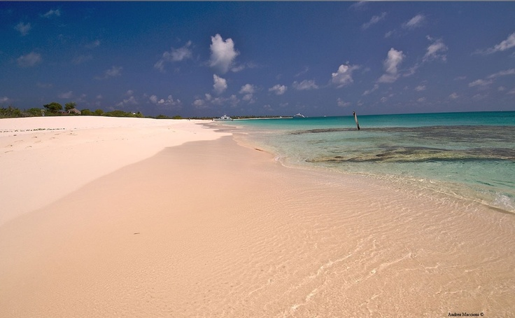 Pink Beach, Barbuda, Antigua and Barbuda   I have always wanted to walk along a beach with pink sand.
