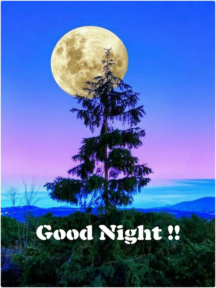 17 best good night images on pinterest good night have - Good night nature pic ...