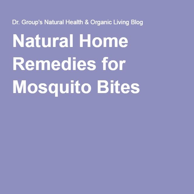 Natural Home Remedies For Mosquito Bites Natural