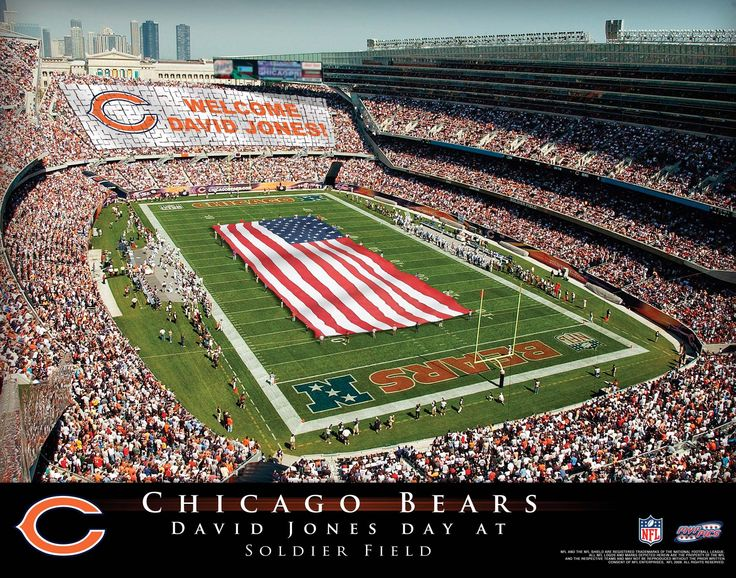 Bears Stadium Tour
