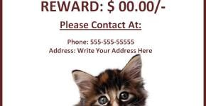 Download Free Missing Pet Poster Template