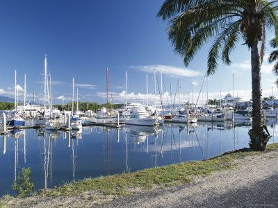 Marina, Port Douglas, Queensland, Australia