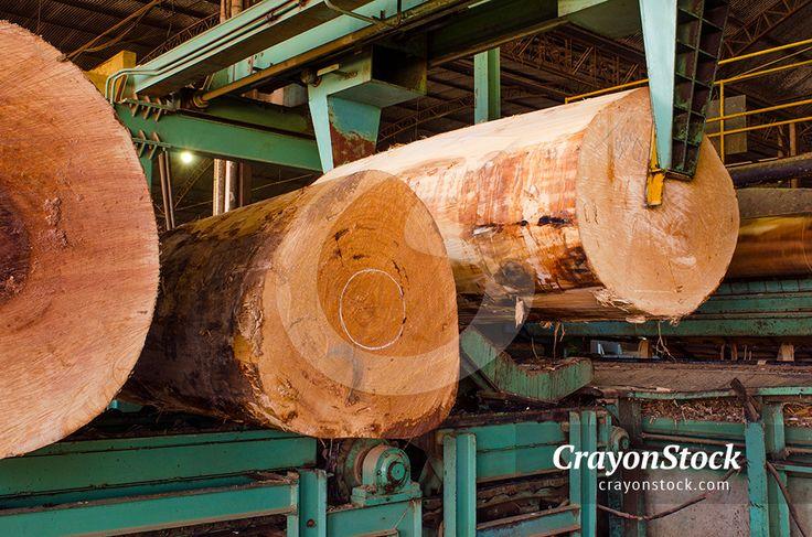 LAMINAÇÃO  Foto: Ricardo Azoury  #Amazonia #Brasil #desmatamento #madeira #troncos #arvores #manejoflorestal #desflorestamento #serraria #serragem #tora #madereira #sumauma #economia #imagensbrasileiras #bancodeimagens #royaltyfree