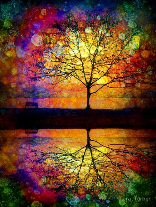 Reflection by Tara Turner. For help accessing your inner vibrancy, contact reneebeckmft.com
