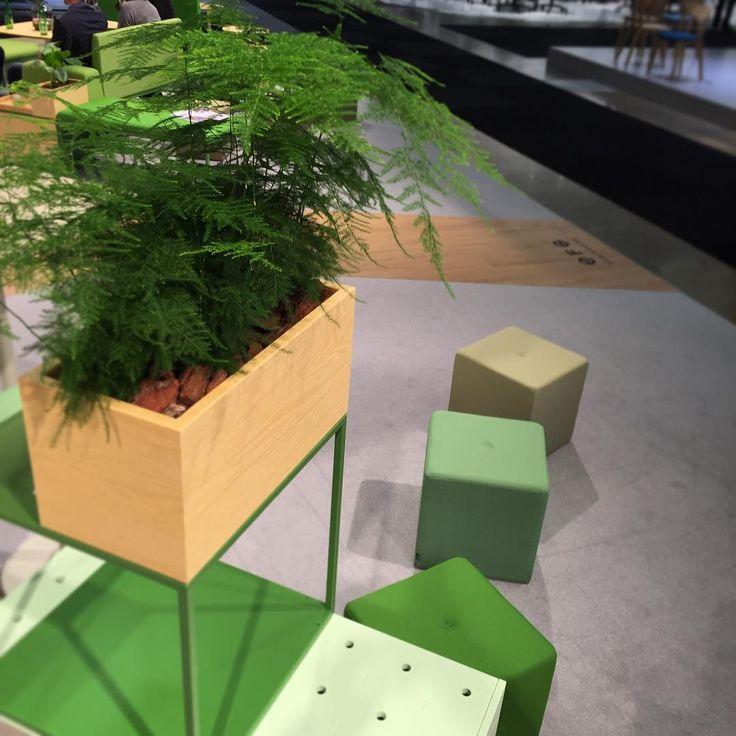 """The return of the greenery. #efg #europeanfurnituregroup #stockholmfurniturefair2016 #stockholmdesignweek2016 #sdw2016"""