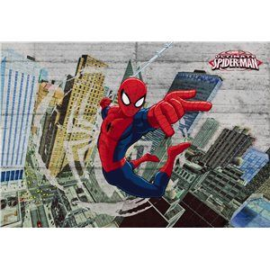 Fotomurales Marvel Comics, SPIDER MAN CONCRETE