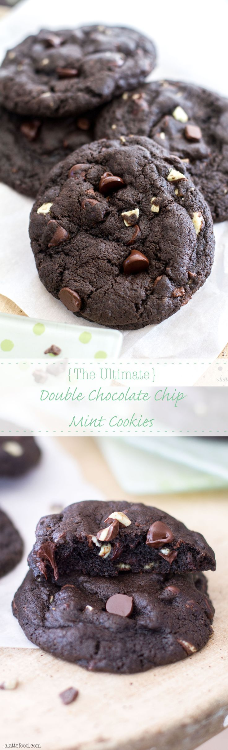 These thick cookies start with dark chocolate and end with mint chips. They are the ultimate mint lover's dream.