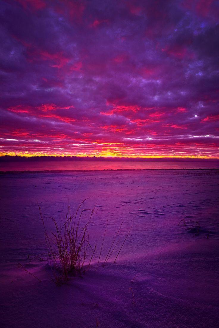 хочет картинки лиловое небо подписчики заметили