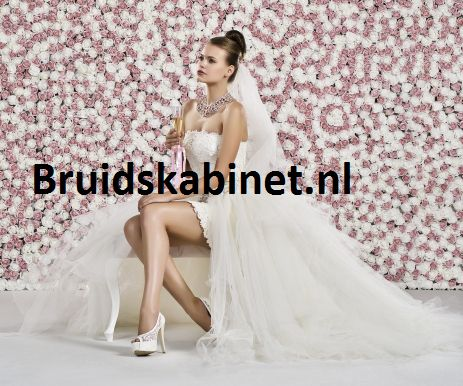 De mooiste betaalbare trouwjurken en gezellige pasbeurten bij Het Bruidkabinet. Bezoek ook de site!