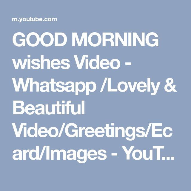 GOOD MORNING wishes Video - Whatsapp /Lovely & Beautiful Video/Greetings/Ecard/Images - YouTube