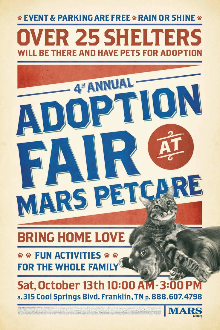 Poster design reference - 2012 Mars Adoption Fair Poster Layout