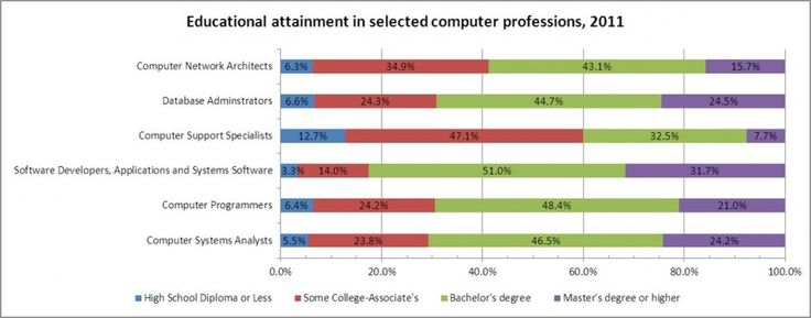 The Professional Computer Workforce