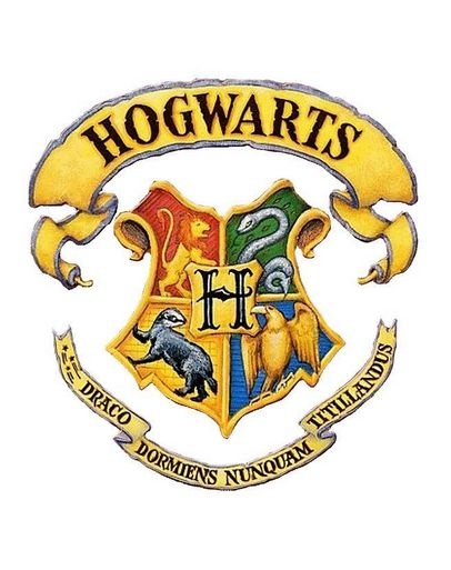 """Wanna know what the Hogwarts motto, """"Draco Dormiens Nunquam Titillandus"""" translates to? Never Tickle a Sleeping Dragon"""