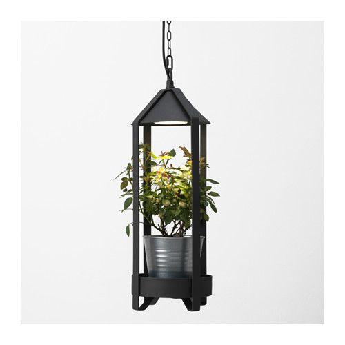 Best Indoor Garden Images On Pinterest Gardening Indoor