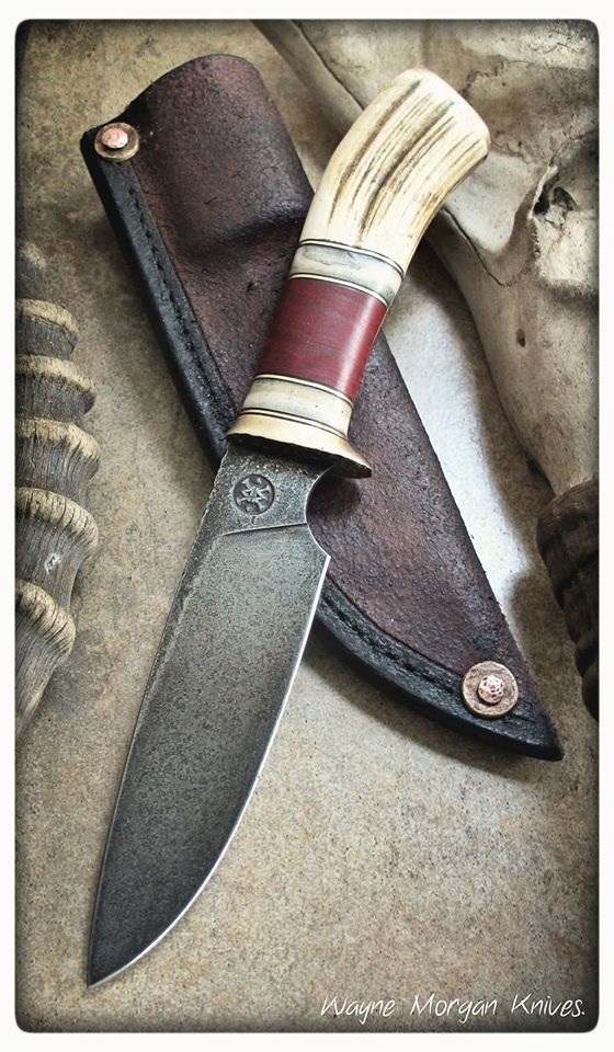 Wayne Morgan Knives... latest pic (not sure whether this is the latest knife)