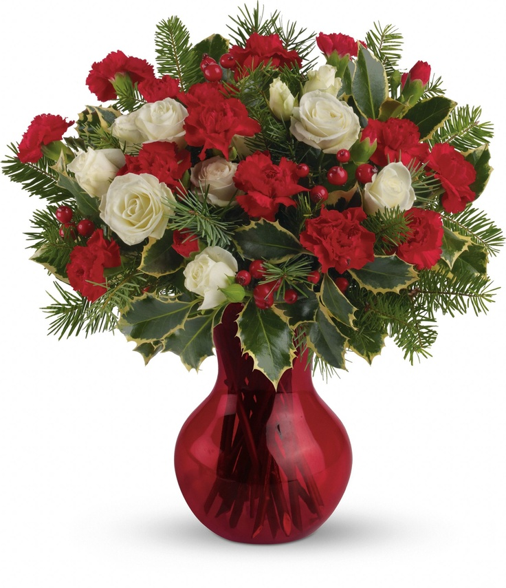 Best images about christmas flowers on pinterest