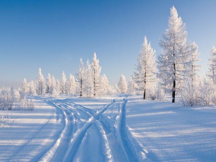 желании картинка зима метельная роскошными будут делать