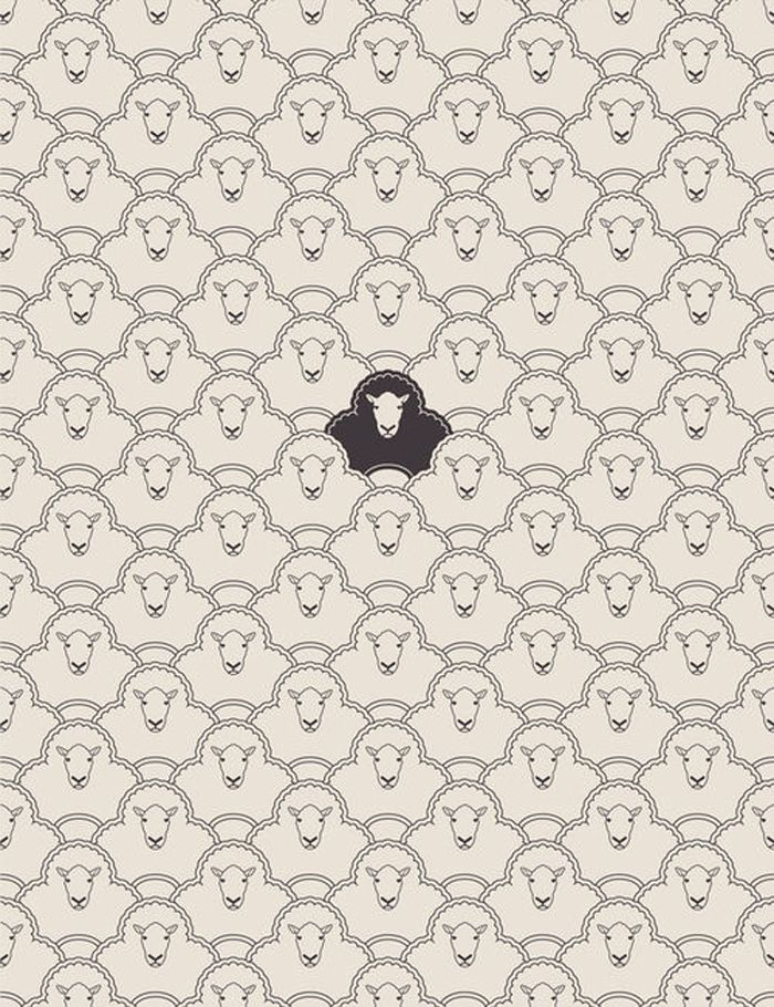 black sheep. via julia.: Babies Black, Blacksheep, Design Patterns, Illustration, Black Sheep Art, Graphics, Graphic Patterns