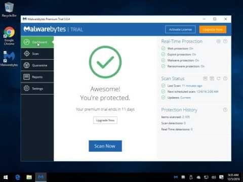 malwarebytes torrents