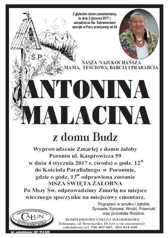 [24tp.pl] Antonina Malacina
