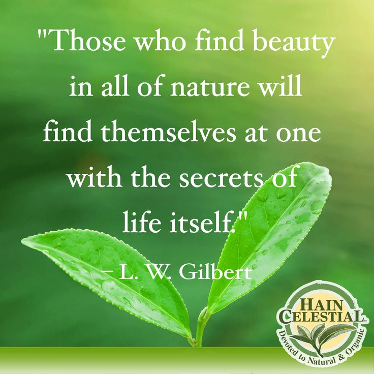 16 Best Images About Nature Appreciation On Pinterest