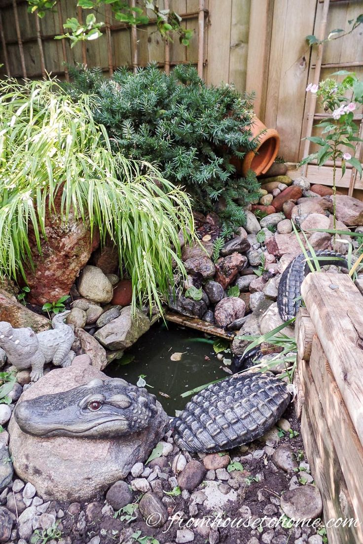 1833 Best Images About Water Gardens On Pinterest Garden 400 x 300