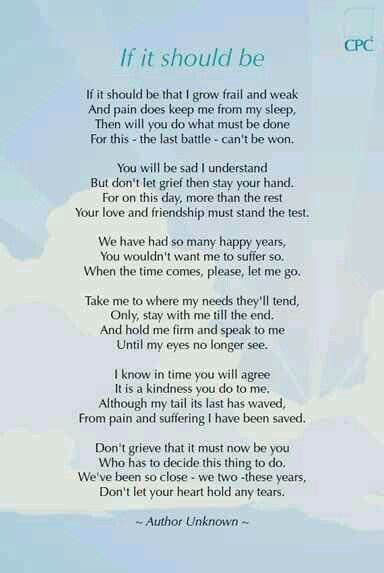 Don't be sad | Bless all dogs | Dog poems, Pet loss grief ...