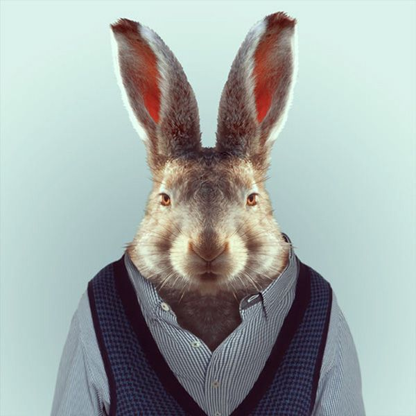 Yago Partal: Zoo Portraits | Trendland: Fashion Blog & Trend Magazine