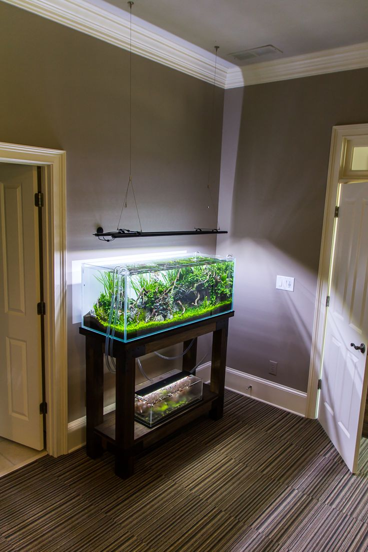 Fish aquarium jobs - Originally Posted By Brian Mc View Post Nice Color That Stain Job Looks Great 10 Days May 30 Iaplc Deadline May 31 Taking It Down To The