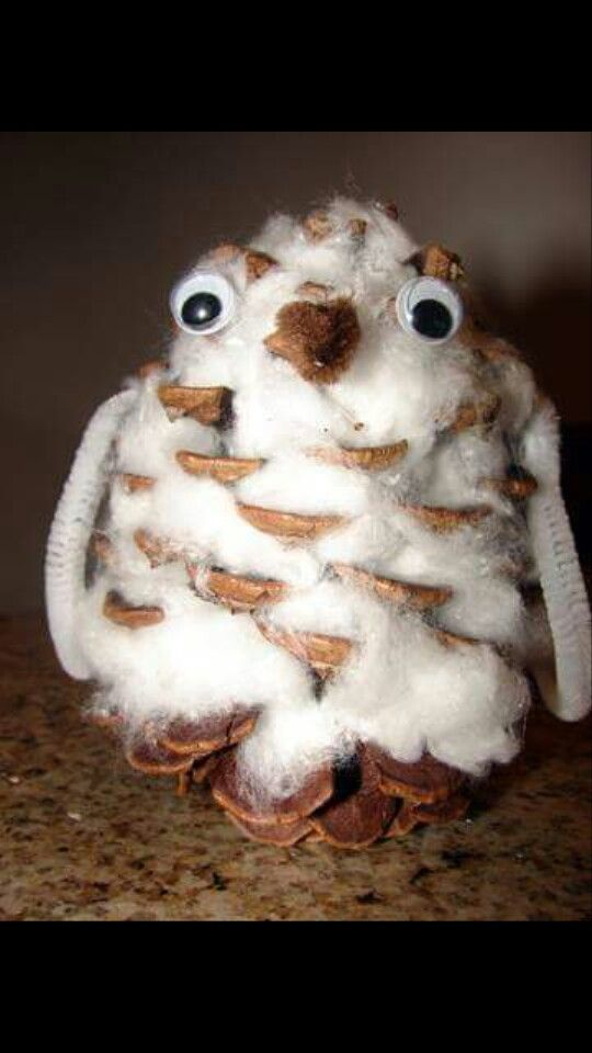 Classroom Creative Ideas ~ Owl made from cotton wool and a pine cone lily