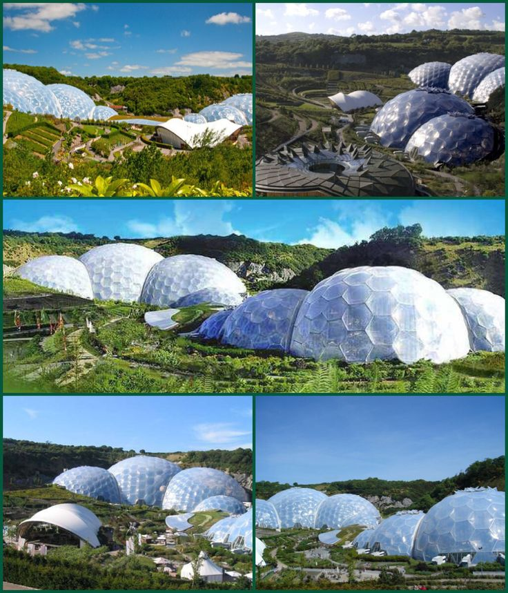 The Eden Project (Cornish: Edenva) is a visitor attraction in Cornwall. Inside the artificial biodomes are plants that are collected from all around the world. The project is located in a reclaimed Kaolinite pit, located 2 km (1.2 mi) from the town of St Blazey and 5 kilometres (3 mi) from the larger town of St Austell, Cornwall. The complex is dominated by two huge enclosures consisting of adjoining domes that house thousands of plant species, and each enclosure emulates a natural biome…