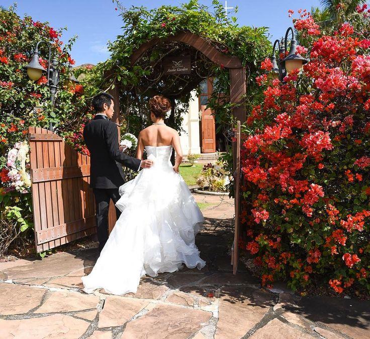 昨日は挙式をして一年��  仲良しのお友達に囲まれて楽しかったなぁ〜 なんとも背中の逞しい花嫁と皆に笑われたw #オープンバックのドレス は背筋しっかり引き締まってた方がカッコ良いでしょ〜�� ・ ・ #wedding #weddingceremony #bride #ceremony #chapel #hawaiiwedding #hawaii #weddingdress  #ハワイ挙式 #チャペル #結婚式 #花嫁の背中 #背筋 http://gelinshop.com/ipost/1514923566817984923/?code=BUGFvUmDcGb