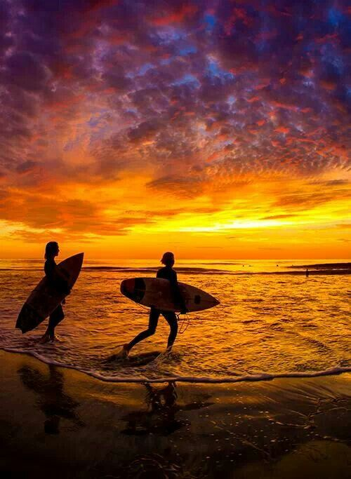 learn how to surf reddit sydney