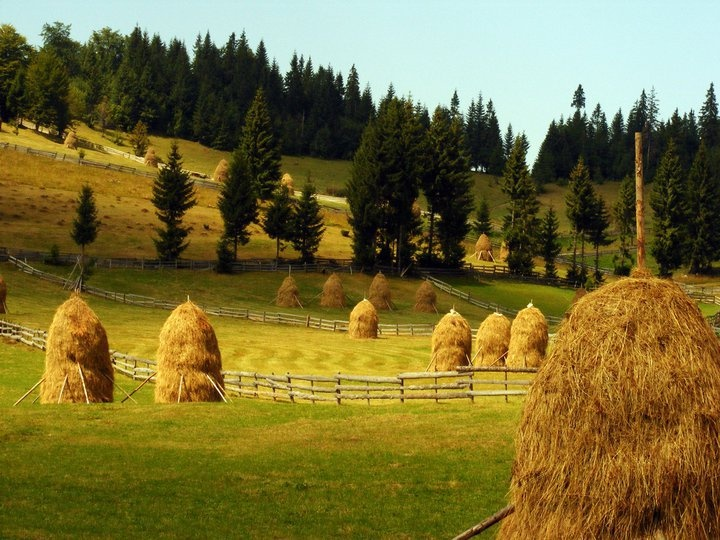 #Romania - feel the connection to #Nature.