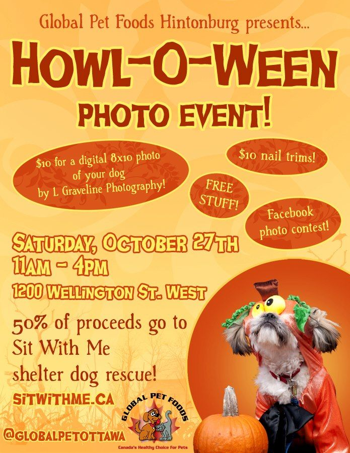"""Mark your calendars!  Attend the Howl-O-Ween Photo event at the Global Pet Foods store in Hintonburg, Ontario.  Saturday, October 27th, 2012 - 11am - 4pm.  50% of the proceeds go to the Sit With Me Shelter dog rescue!      For those pet parents who live in Kanata, the Global Pet Foods Kanata store will host the same event on Sunday, October 28, 2012 from 11am - 4 pm.     It's going to be a """"howl"""" of a time!"""