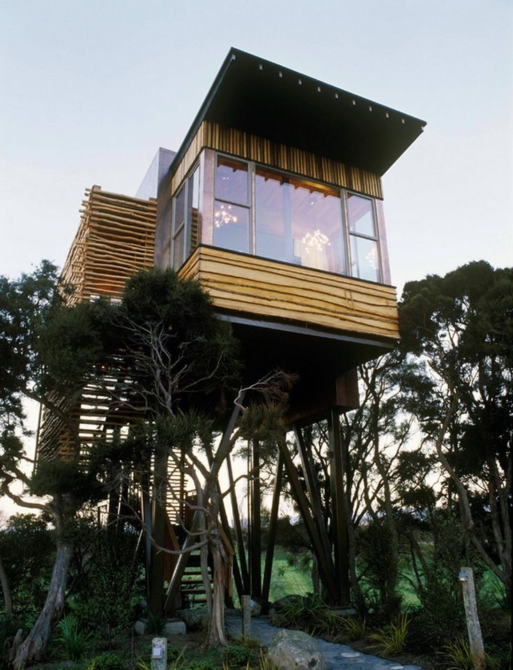 478 best tree houses images on pinterest for Modern new zealand homes